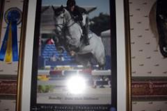 SM-silver 2010 Pris för bästa svenskuppfödda häst 2006. Nu såld till världselitryttaren Jan Topz