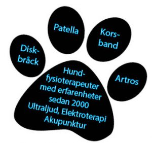 Blekinge Hundsim - behandlingar